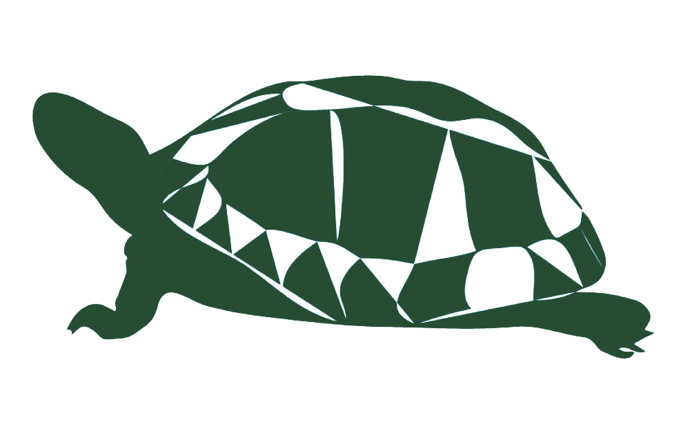 Stylized image of a turtle