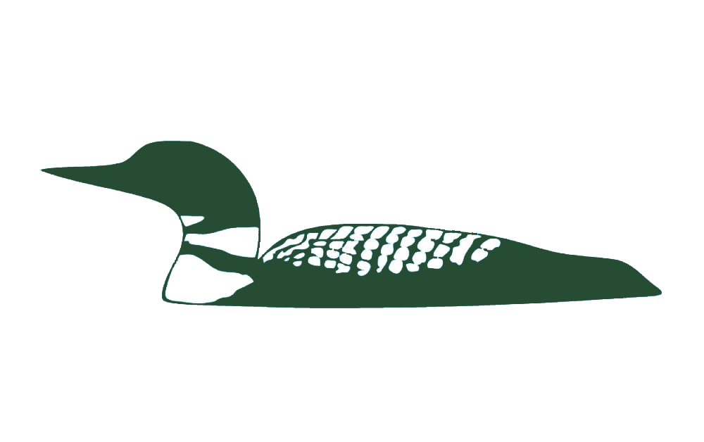 Stylized image of a loon
